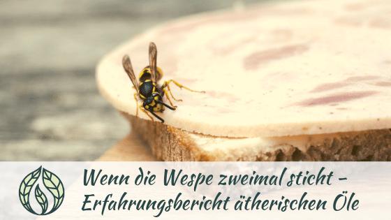 Wenn-die-Wespe-zweimal-sticht-Erfahrungsbericht-therische-le-min